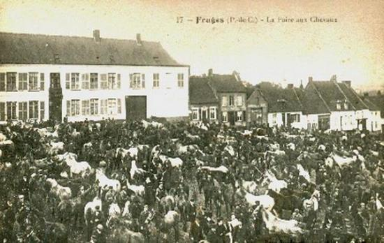 la-foire-aux-chevaux-fruges.jpg